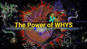 Videoz-Coversz-animotoz-images - The_Power_of_WHYS_cover.png