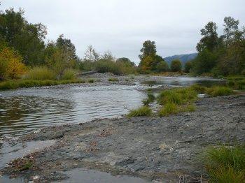 Umpqua River Scene