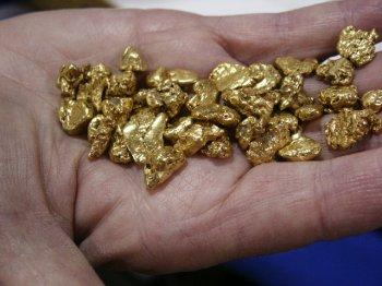 Hand full of beautiful gold nuggets