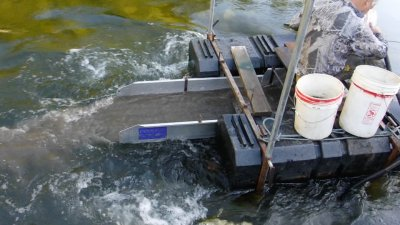 floating sluice