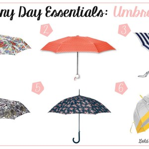 Rainy Day Essentials Umbrellas
