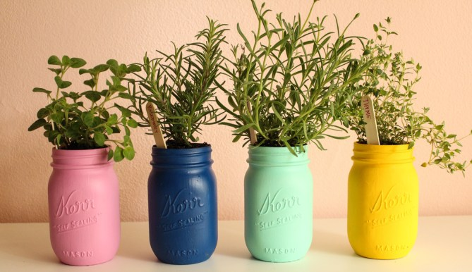 DIY Painted Mason Jar Herb Garden & Tray by Gold Standard Workshop