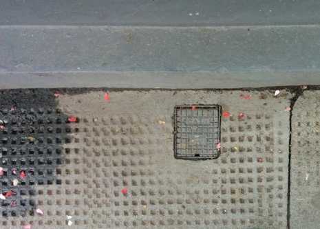 holes-in-the-pavement-36