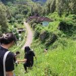 Desa Wisata Bangkit dari Lereng Wilis, Bag 1