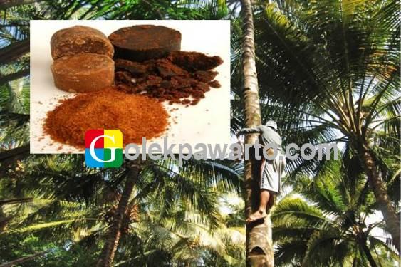 Gula Pacitan Primadona Masyarakat Jawa
