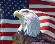 Eagle4thOfJULY