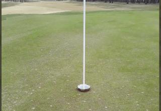 Golf kopp