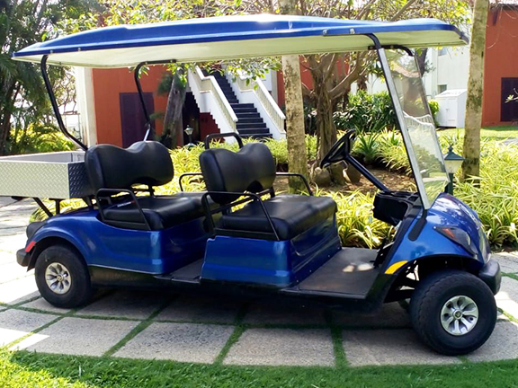 electric utility vehicle 4-seater