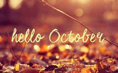 Stage du mois d'Octobre : sympa le programme !