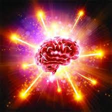 Le cerveau nous est appris partout aujourd'hui , mais parfois on ne prend pas le temps de le connaître. Le temps viendra...