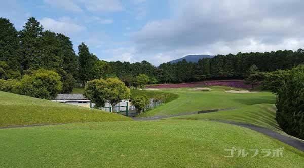 沼津ゴルフクラブの愛鷹5ホールのレディースティ