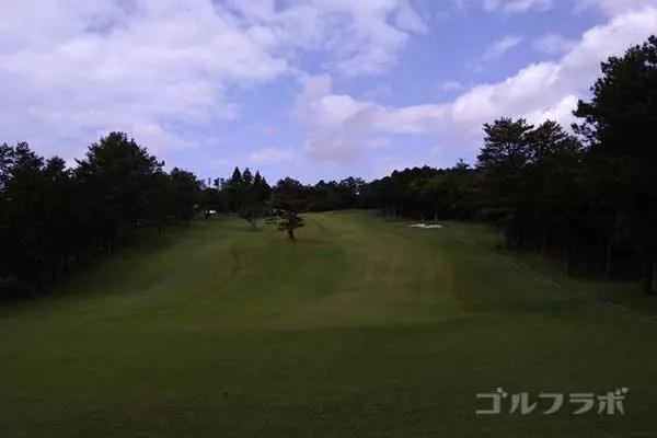 沼津ゴルフクラブの伊豆7ホールのレディースティ