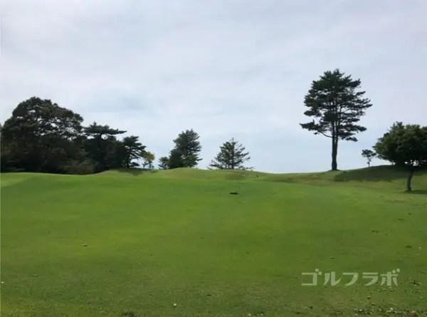 凾南ゴルフ倶楽部の4番ホールのレディースティ