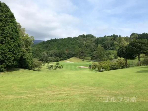 凾南ゴルフ倶楽部の7番ホールのレディースティ