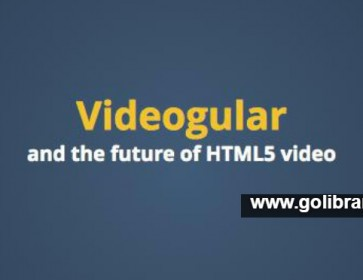 Creating a video plugin using videogular