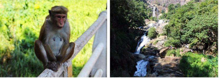 Ravana Waterfalls Sri Lanka Ella