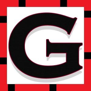 Logo Golook 2017