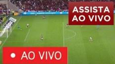 ldu x flamengo ao vivo com image 9
