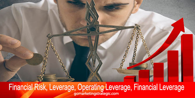 Financial Risk, Leverage, Operating Leverage, Financial Leverage