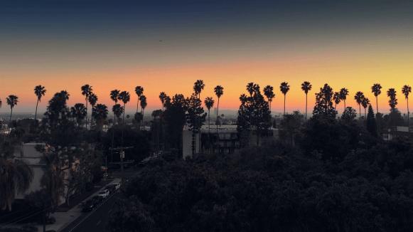 videoblocks-aerial-view-pan-across-row-of-palm-trees-on-hollywood-boulevard-with-city-of-los-angeles-cityscape-and-sunset-sky-in-background-4k-uhd_s5fsv0aim_thumbnail-full11