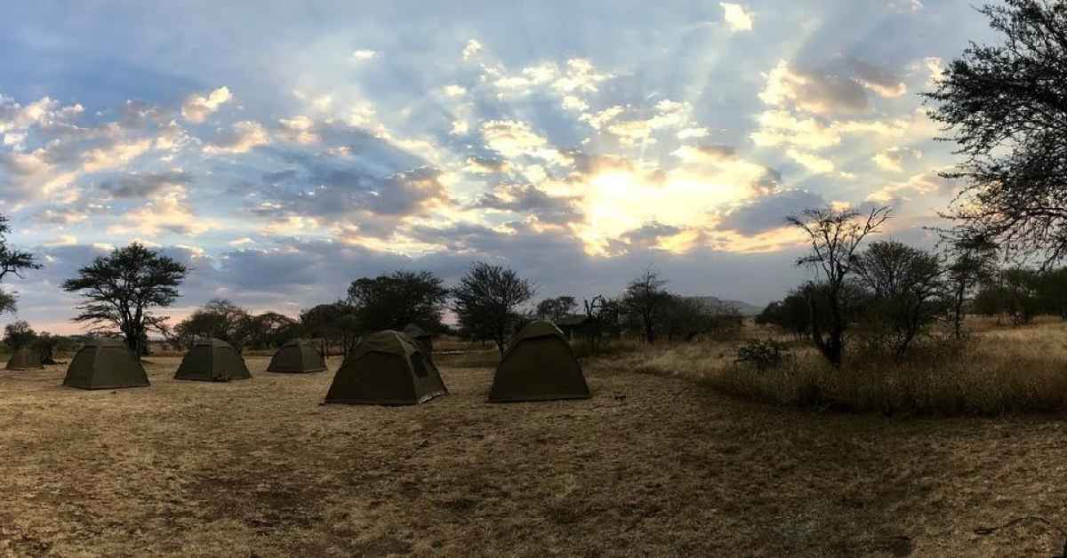 Gondwana Ecotour's campsite in the early morning on our Great Migration Camping Safari.