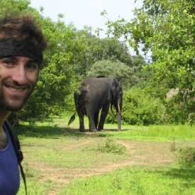 Jared Sternberg with a Wild African Elephant