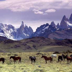 Andean Peaks in Patagonia!