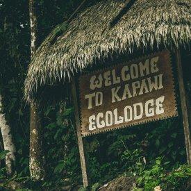 Welcome to Kapawi Ecolodge