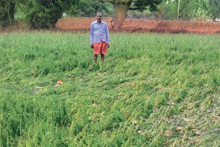 farmers-crop-loss-25-fab