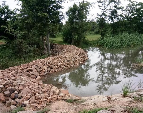nala-check-dam-10-july-2020