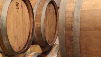 Butoaiele cu vin de la Domeniul Vlădoi. FOTO Adrian Boioglu