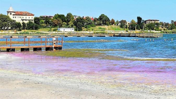 Nivelul lacului Techirghiol a scăzut cu aproximativ un metru. FOTO ABADL
