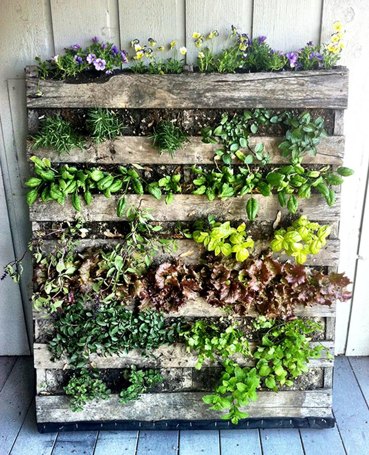 Easy Vegetable Gardening With Pallets 13