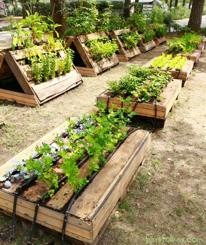Easy Vegetable Gardening With Pallets 23