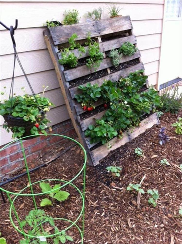 Easy Vegetable Gardening With Pallets 33