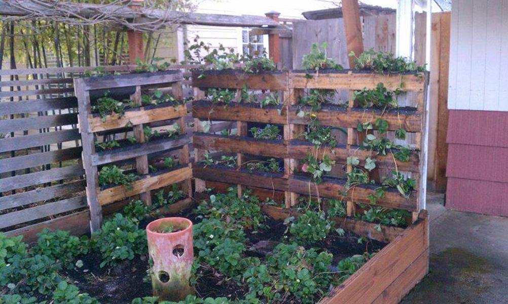Easy Vegetable Gardening With Pallets 35