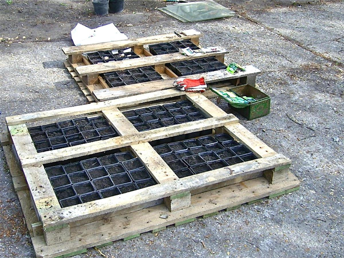 Easy Vegetable Gardening With Pallets 4