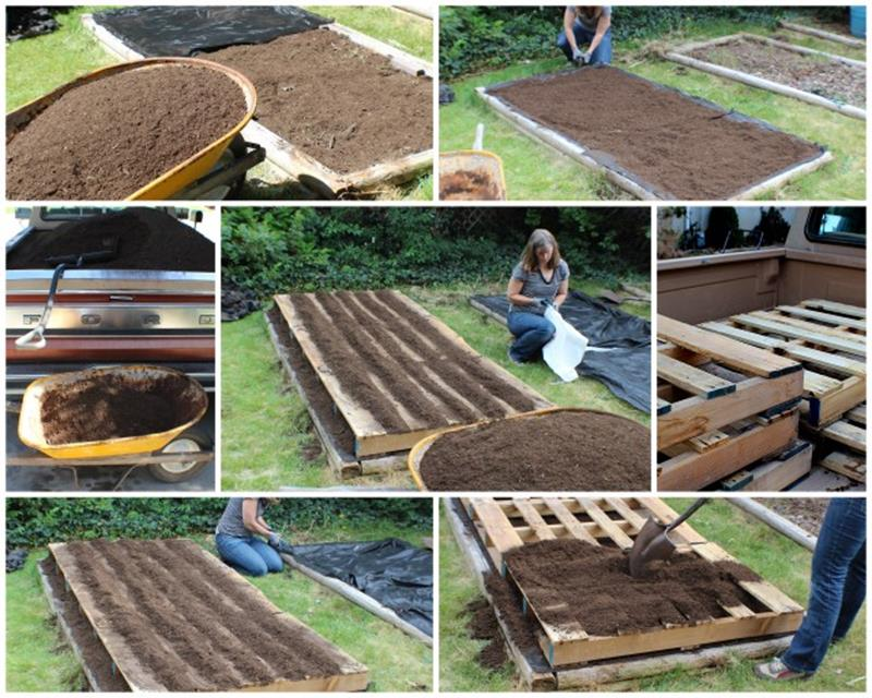 Easy Vegetable Gardening With Pallets 8