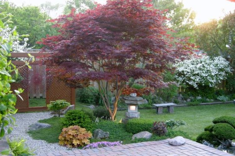 Japanese Style Garden Design Ideas 11