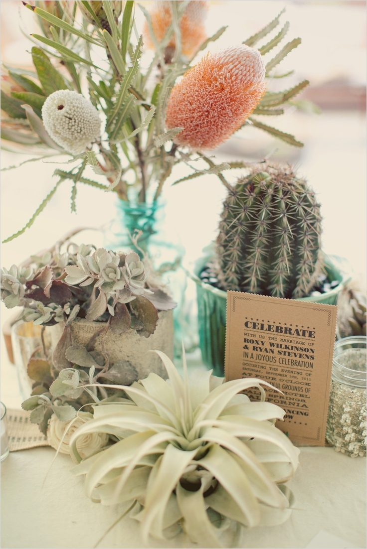 43 Beautiful Cactus Centerpiece Ideas 12 1000 Ideas About Cactus Centerpiece On Pinterest 4