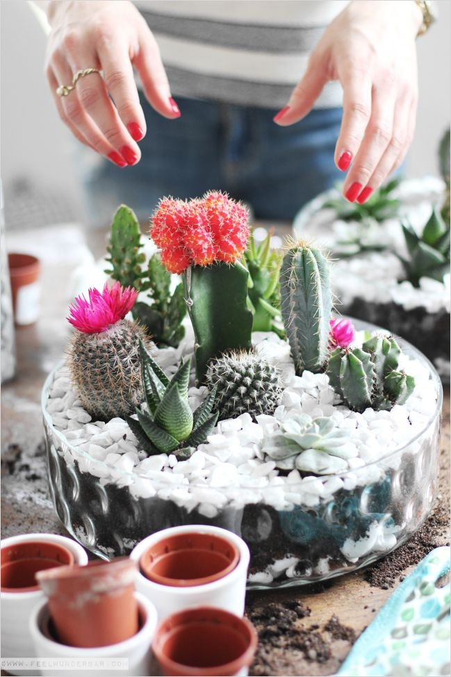 43 Beautiful Cactus Centerpiece Ideas 85 Best 25 Cactus Centerpiece Ideas On Pinterest 7