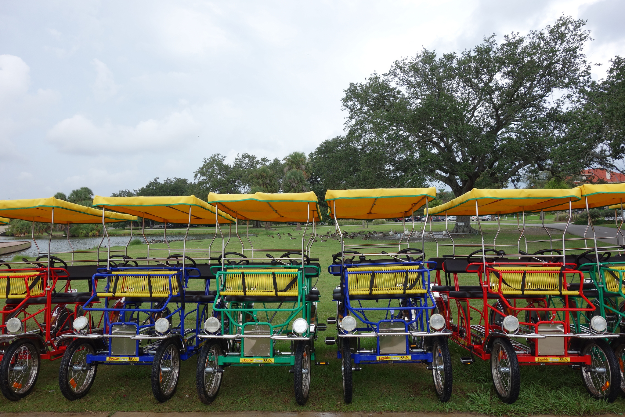 GoNOLA Top 5: Bike Rentals In New Orleans