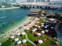 Abu Dhabi 'father Of Gazelle' - Gonomad Travel