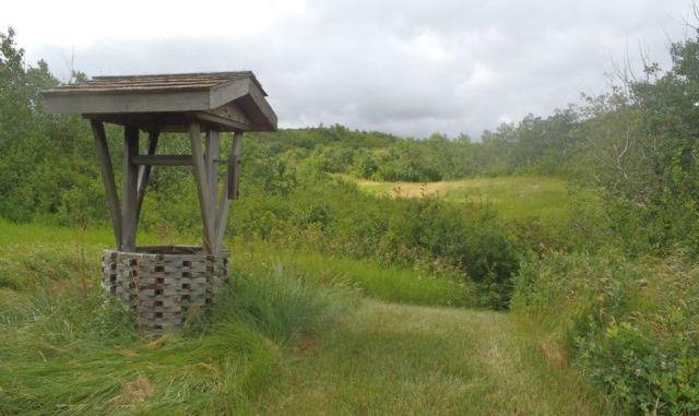 Prairie morning