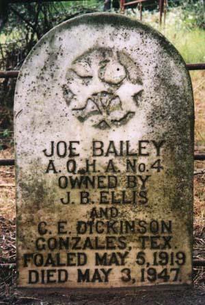 Gonzales Joe Bailey Memorial Project