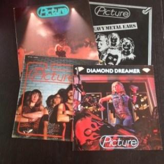 Theo Ploegs verzameling picture discs