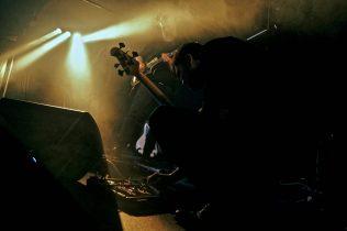 Barst - Foto: Stephan Vercaemer