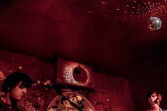 Ponykamp - Foto: Stephan Vercaemer