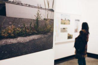 'Seeds Of Change' - Foto: Joeri Thiry - STUK