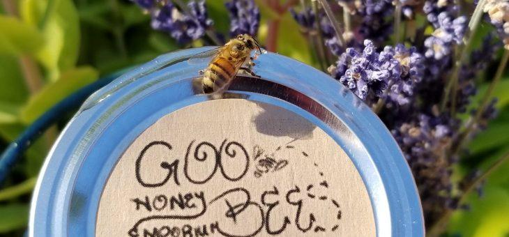 Knee Deep In (Goo)Bees